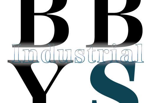 耐積雪量300cm強固技術鉄骨カーポート「BBYs工業」